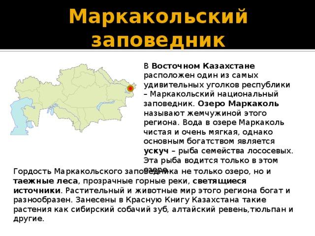 Маркакольский заповедник В Восточном Казахстане расположен один из самых удивительных уголков республики – Маркакольский национальный заповедник. Озеро Маркаколь называют жемчужиной этого региона. Вода в озере Маркаколь чистая и очень мягкая, однако основным богатством является ускуч – рыба семейства лососевых. Эта рыба водится только в этом озере. Гордость Маркакольского заповедника не только озеро, но и таежные леса , прозрачные горные реки, светящиеся источники . Растительный и животные мир этого региона богат и разнообразен. Занесены в Красную Книгу Казахстана такие растения как сибирский собачий зуб, алтайский ревень,тюльпан и другие.