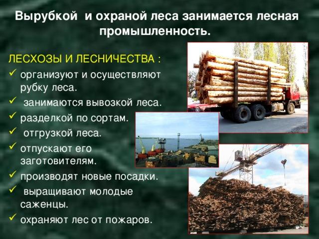Вырубкой и охраной леса занимается лесная промышленность. ЛЕСХОЗЫ И ЛЕСНИЧЕСТВА :
