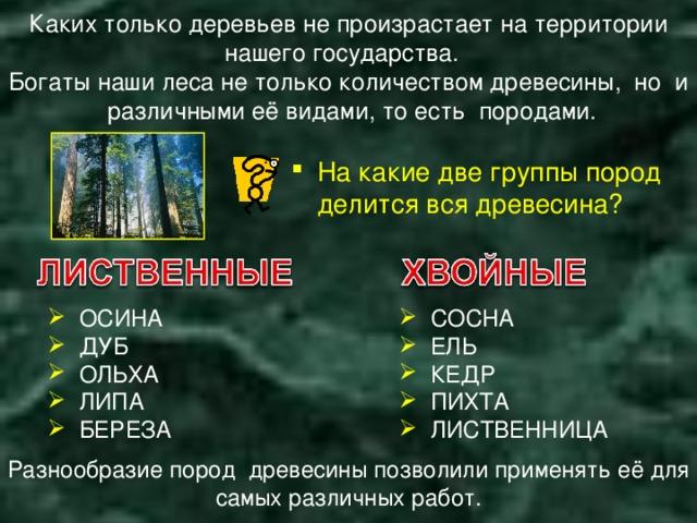 Каких только деревьев не произрастает на территории нашего государства. Богаты наши леса не только количеством древесины, но и различными её видами, то есть породами. На какие две группы пород делится вся древесина?  ОСИНА  ДУБ  ОЛЬХА  ЛИПА  БЕРЕЗА  СОСНА  ЕЛЬ  КЕДР  ПИХТА  ЛИСТВЕННИЦА Разнообразие пород древесины позволили применять её для самых различных работ.