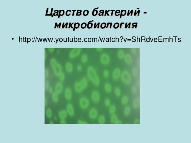 Царство бактерий - микробиология