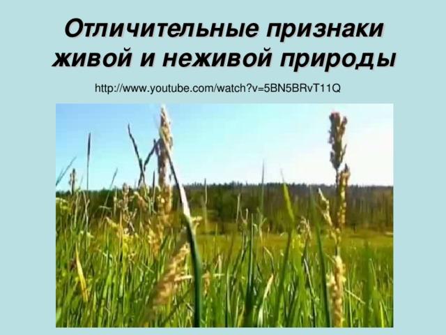Отличительные признаки живой и неживой природы http://www.youtube.com/watch?v=5BN5BRvT11Q
