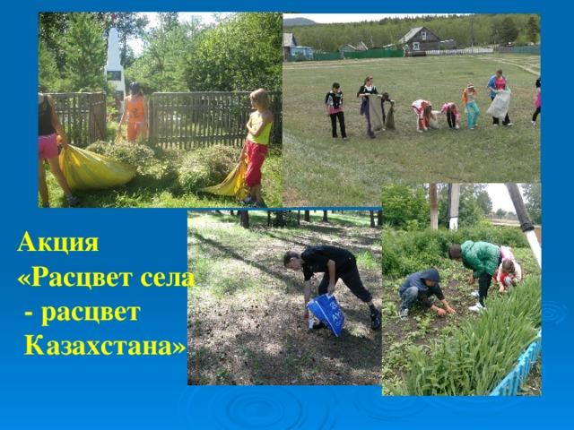 Акция «Расцвет села  - расцвет  Казахстана»
