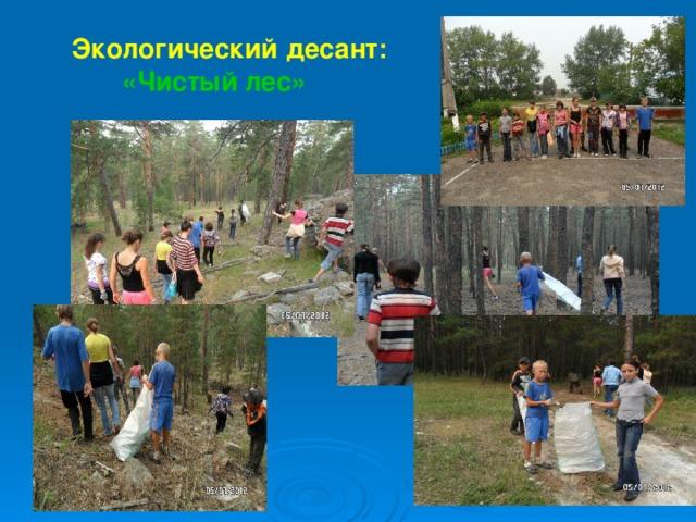 Экологический десант: «Чистый лес»