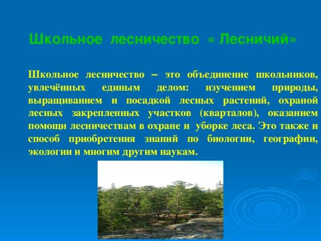 Школьное лесничество « Лесничий» Школьное лесничество – это объединение школьников, увлечённых единым делом: изучением природы, выращиванием и посадкой лесных растений, охраной лесных закрепленных участков (кварталов), оказанием помощи лесничествам в охране и уборке леса. Это также и способ приобретения знаний по биологии, географии, экологии и многим другим наукам.