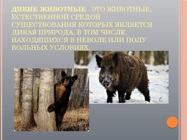 Дикие животные - это животные, естественной средой существования которых является дикая природа, в том числе, находящихся в неволе или полу вольных условиях.