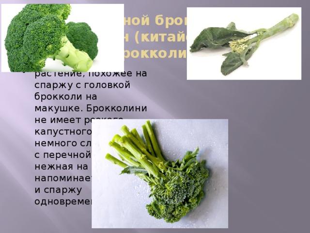 Гибрид обычной брокколи и овоща гайлан (китайская брокколи) -брокколини растение, похожее на спаржу с головкой брокколи на макушке. Брокколини не имеет резкого капустного духа, немного сладковата, с перечной ноткой, нежная на вкус, напоминает брокколи и спаржу одновременно. . Брокколини не имеет резкого капустного духа, немного сладковата, с перечной ноткой, нежная на вкус, напоминает брокколи и спаржу одновременно. Новый овощ содержит массу полезных веществ и низкокалориен.   В США, Испании, Бразилии, странах Азии брокколини — привычный гарнир. Обычно его либо слегка обжаривают в масле либо подают свежим, политым маслом. Брокколини отлично чувствует себя в ориентальных и итальянских блюдах.