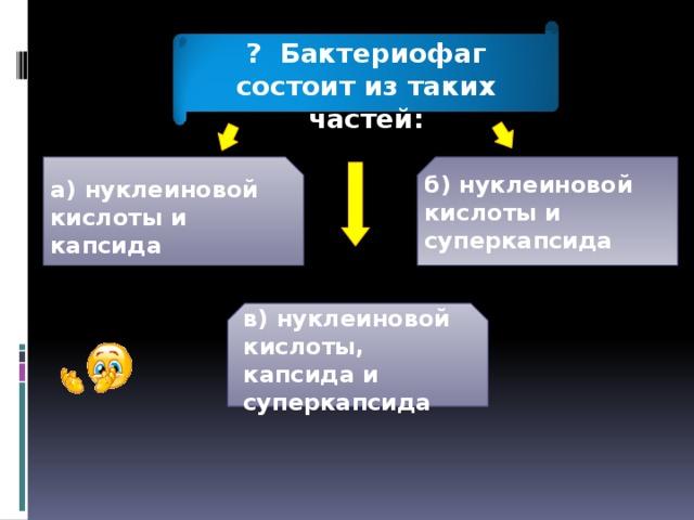 ? Бактериофаг состоит из таких частей: а) нуклеиновой кислоты и капсида б) нуклеиновой кислоты и суперкапсида в) нуклеиновой кислоты, капсида и суперкапсида