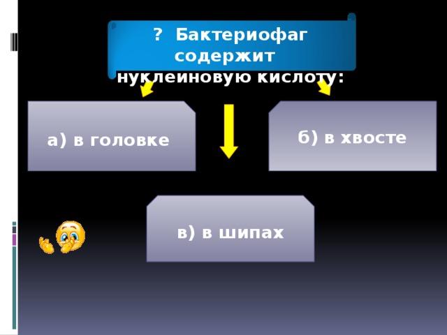 ? Бактериофаг содержит нуклеиновую кислоту: а) в головке б) в хвосте в) в шипах