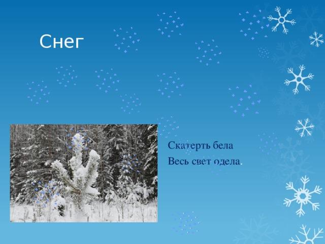 Снег Скатерть бела Весь свет одела .