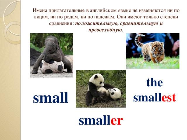 Имена прилагательные в английском языке не изменяются ни по лицам, ни по родам, ни по падежам. Они имеют только степени сравнения: положительную, сравнительную и превосходную. the small est  small small er