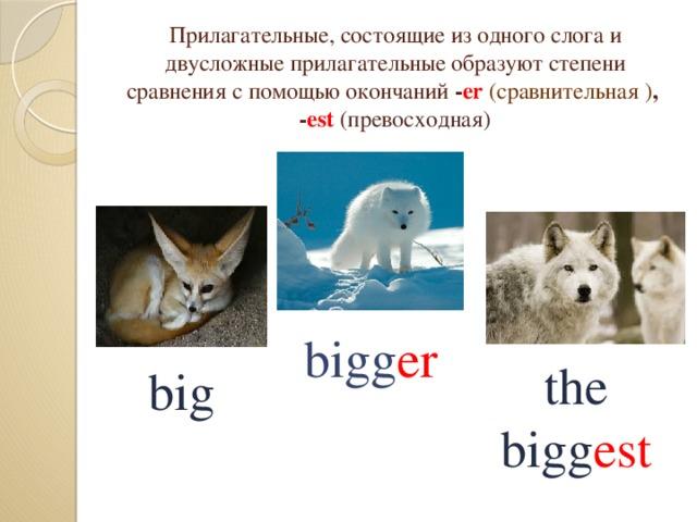 Прилагательные, состоящие из одного слога и двусложные прилагательныеобразуют степени сравнения с помощью окончаний - er (сравнительная ) , - est (превосходная) bigg er the bigg est big