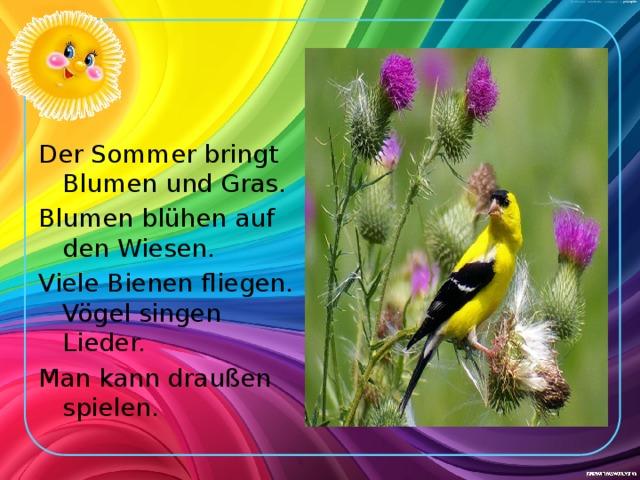 Der Sommer bringt Blumen und Gras. Blumen blühen auf den Wiesen. Viele Bienen fliegen. Vögel singen Lieder. Man kann draußen spielen.
