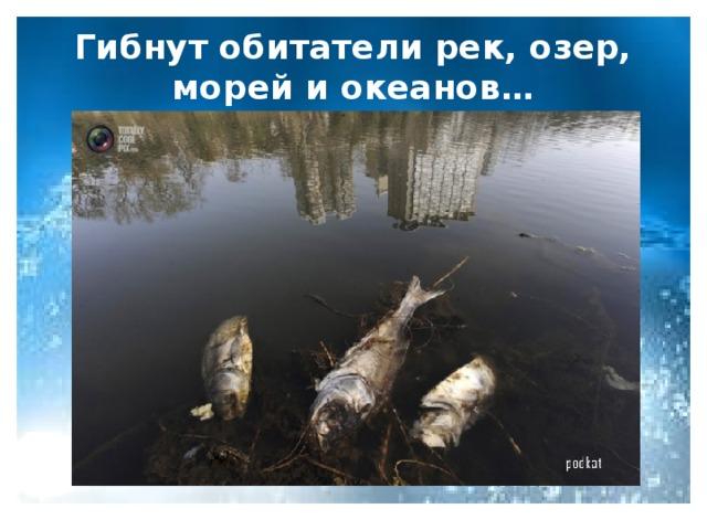 Гибнут обитатели рек, озер, морей и океанов…