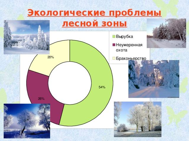 Экологические проблемы лесной зоны