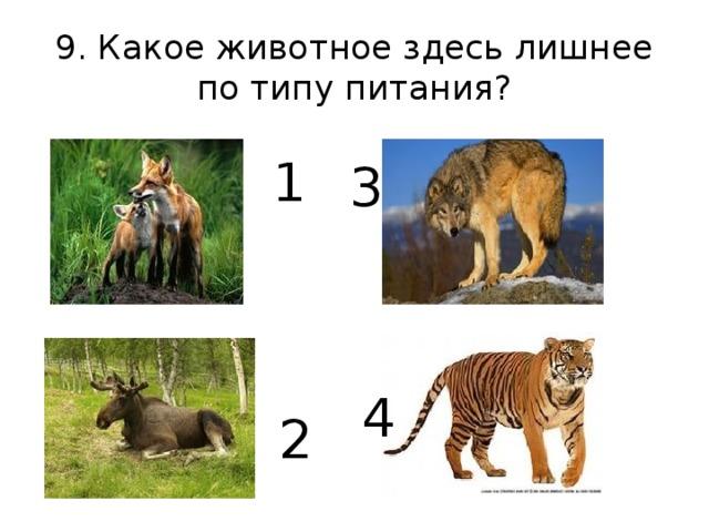 9. Какое животное здесь лишнее по типу питания? 1 3  4 2