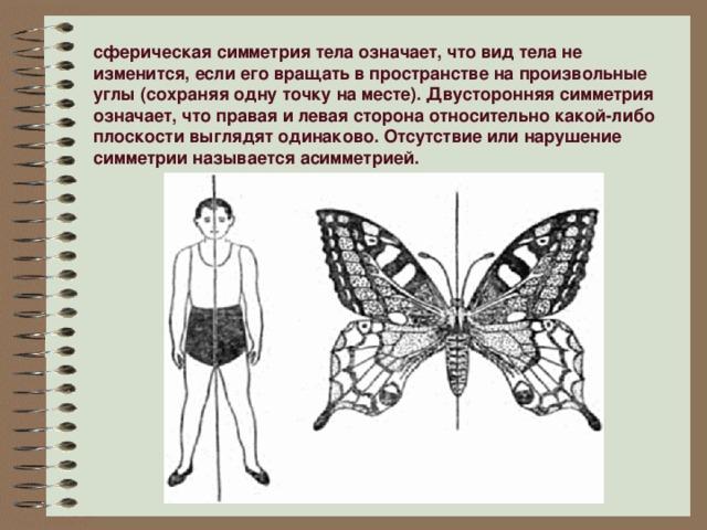 сферическая симметрия тела означает, что вид тела не изменится, если его вращать в пространстве на произвольные углы (сохраняя одну точку на месте). Двусторонняя симметрия означает, что правая и левая сторона относительно какой-либо плоскости выглядят одинаково. Отсутствие или нарушение симметрии называется асимметрией.