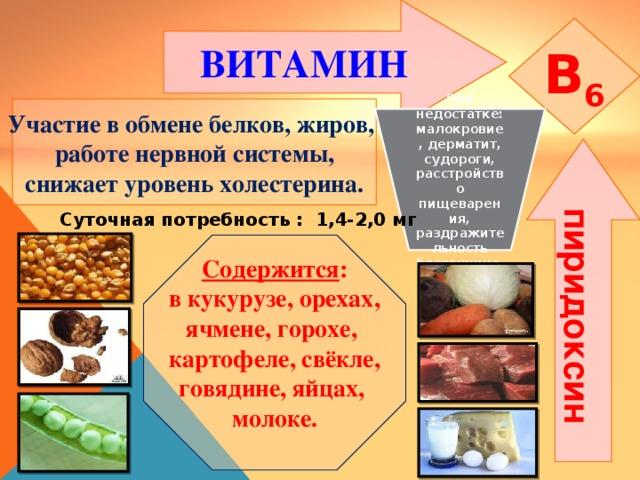 ВИТАМИН  пиридоксин B 6 Участие в обмене белков, жиров, работе нервной системы, снижает уровень холестерина.  При недостатке: малокровие, дерматит, судороги, расстройство пищеварения, раздражительность бессонница . Суточная потребность : 1,4-2,0 мг Содержится : в кукурузе, орехах, ячмене, горохе, картофеле, свёкле, говядине, яйцах, молоке.