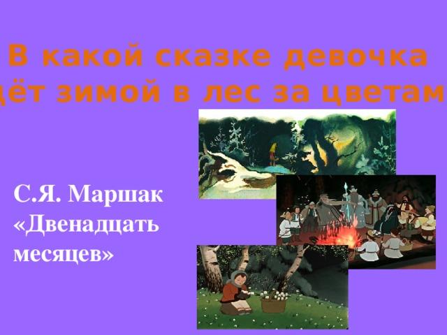 В какой сказке девочка идёт зимой в лес за цветами? С.Я. Маршак «Двенадцать месяцев»