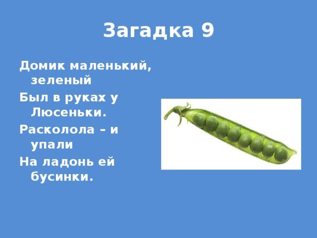 Загадка 9 Домик маленький, зеленый Был в руках у Люсеньки. Расколола – и упали На ладонь ей бусинки.