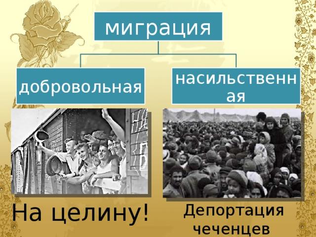 миграция добровольная насильственная На целину! Депортация чеченцев и ингушей