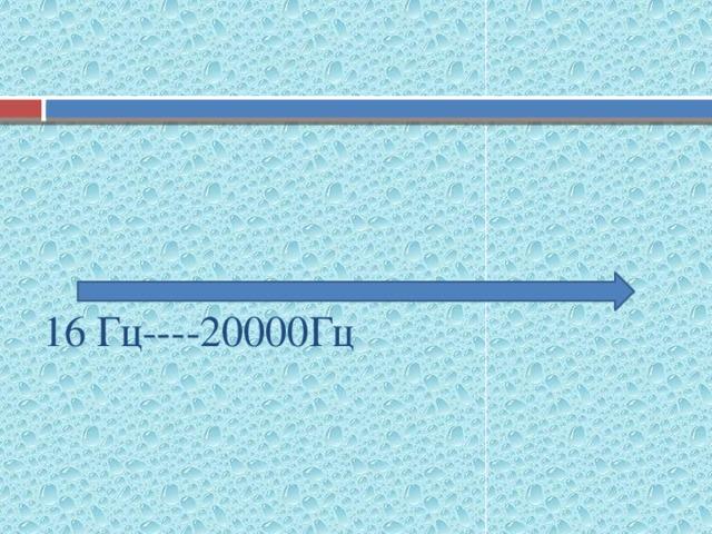 инфразвук звук ультразвук 16 Гц----20000Гц