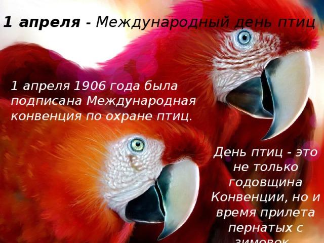 1 апреля - Международный день птиц   1 апреля 1906 года была подписана Международная конвенция по охране птиц. День птиц - это не только годовщина Конвенции, но и время прилета пернатых с зимовок.
