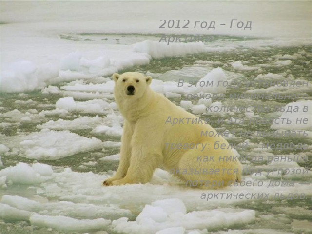 2012 год – Год Арктики    В этом году установлен рекорд минимального количества льда в Арктике, и эта новость не может не вызывать тревогу: белый медведь как никогда раньше оказывается под угрозой потери своего дома — арктических льдов.