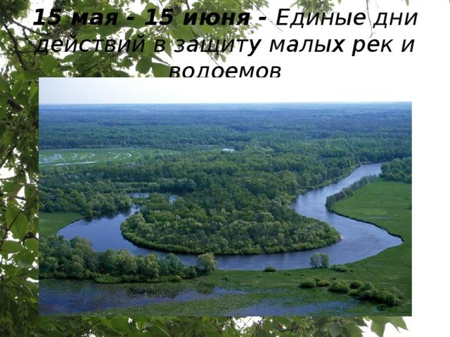 15 мая - 15 июня - Единые дни действий в защиту малых рек и водоемов
