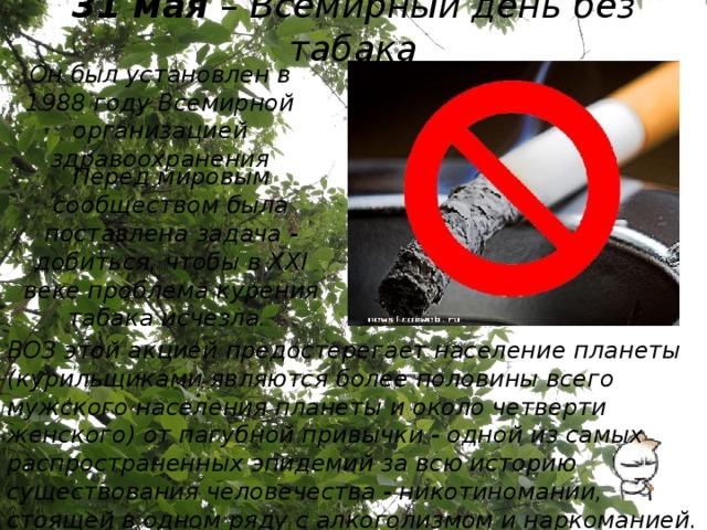 31 мая – Всемирный день без табака Он был установлен в 1988 году Всемирной организацией здравоохранения Перед мировым сообществом была поставлена задача - добиться, чтобы в XXI веке проблема курения табака исчезла. ВОЗ этой акцией предостерегает население планеты (курильщиками являются более половины всего мужского населения планеты и около четверти женского) от пагубной привычки - одной из самых распространенных эпидемий за всю историю существования человечества - никотиномании, стоящей в одном ряду с алкоголизмом и наркоманией.