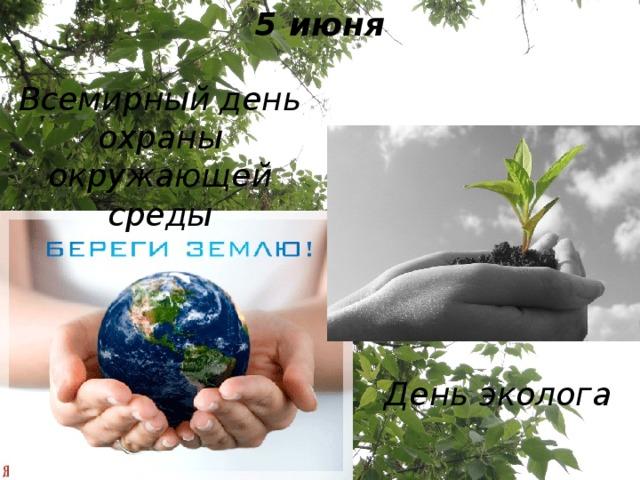 5 июня Всемирный день охраны окружающей среды День эколога