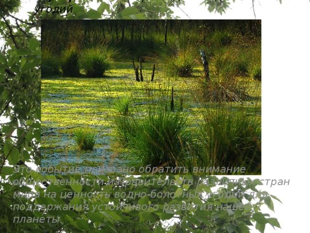 2 февраля - Всемирный день водно-болотных угодий   Это событие призвано обратить внимание общественности и Правительств различных стран мира на ценность водно-болотных угодий для поддержания устойчивого развития нашей планеты.