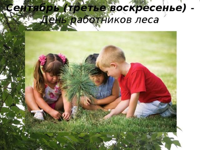 Сентябрь (третье воскресенье) - День работников леса