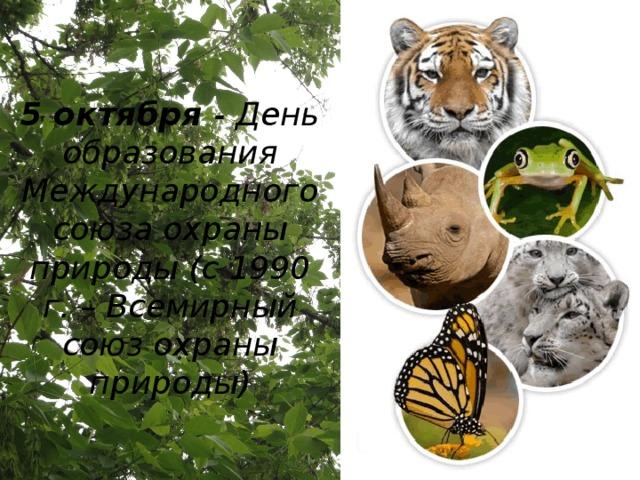 5 октября - День образования Международного союза охраны природы (с 1990 г. – Всемирный союз охраны природы)