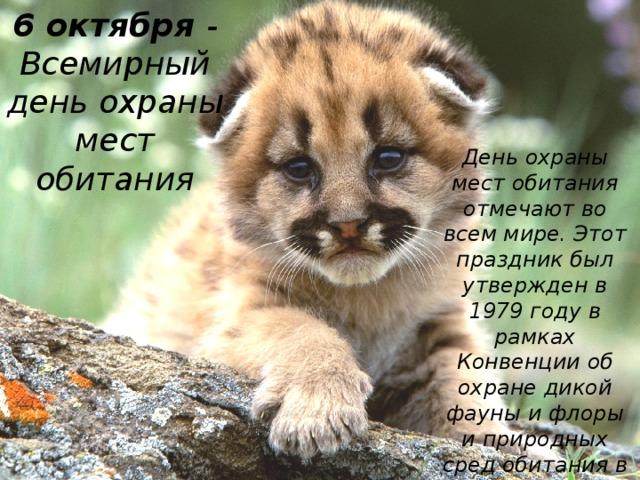 6 октября - Всемирный день охраны мест обитания День охраны мест обитания отмечают во всем мире. Этот праздник был утвержден в 1979 году в рамках Конвенции об охране дикой фауны и флоры и природных сред обитания в Европе.