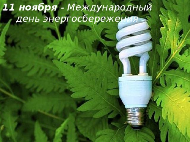 11 ноября - Международный день энергосбережения