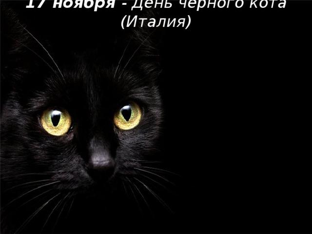 17 ноября - День черного кота (Италия)