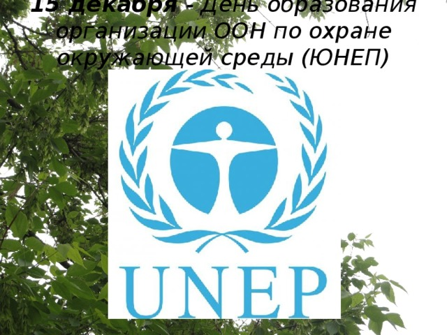 15 декабря - День образования организации ООН по охране окружающей среды (ЮНЕП)