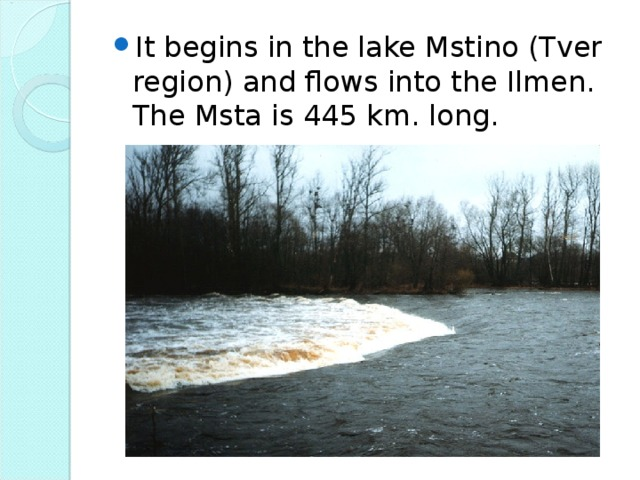 It begins in the lake Mstino (Tver region) and flows into the Ilmen. The Msta is 445 km. long.