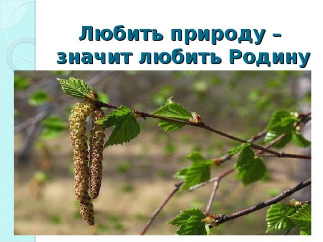 Любить природу –  значит любить Родину