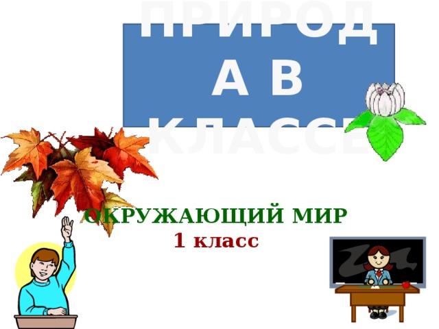 ПРИРОДА В КЛАССЕ ОКРУЖАЮЩИЙ МИР 1 класс