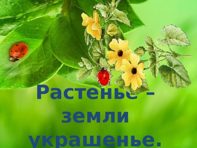 Растенье – земли украшенье.
