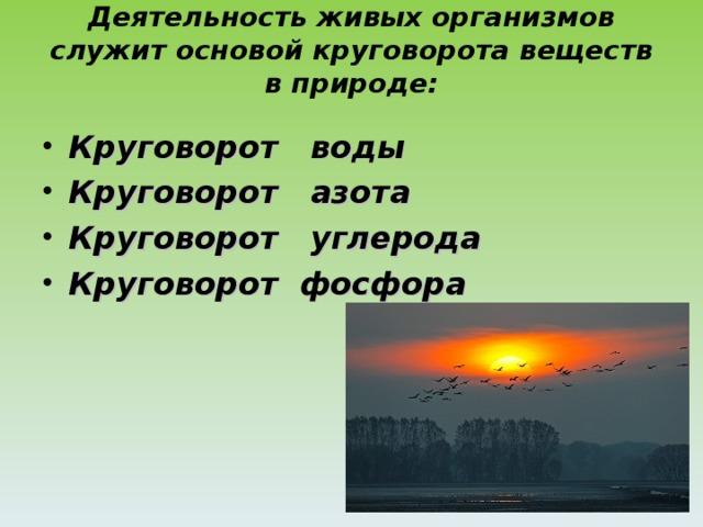 Деятельность живых организмов служит основой круговорота веществ в природе:   Круговорот воды Круговорот азота Круговорот углерода Круговорот фосфора