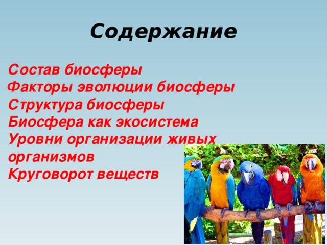 Содержание Состав биосферы Факторы эволюции биосферы Структура биосферы Биосфера как экосистема Уровни организации живых организмов Круговорот веществ