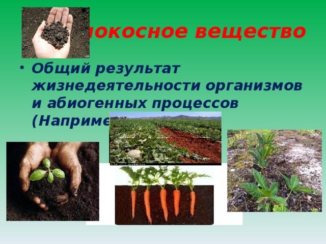 Биокосное вещество