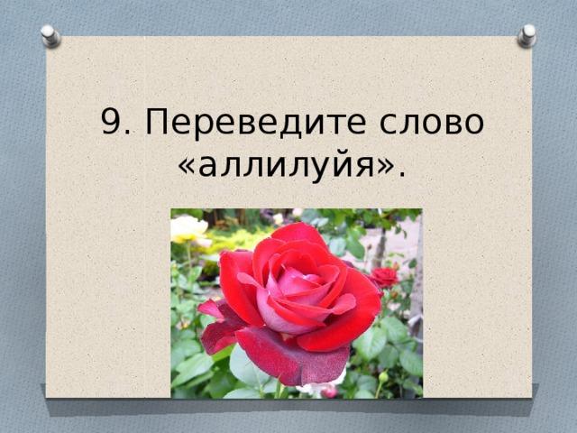 9. Переведите слово «аллилуйя».