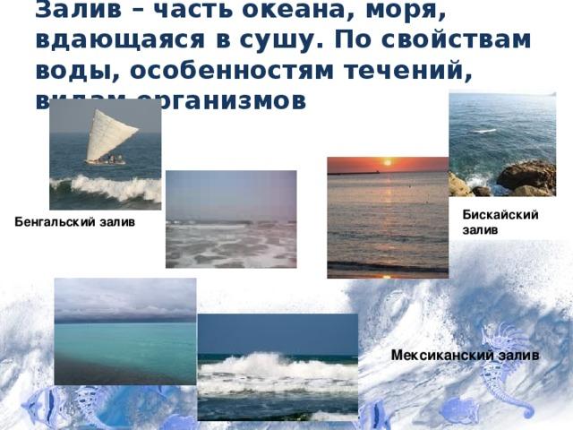 Залив – часть океана, моря, вдающаяся в сушу. По свойствам воды, особенностям течений, видам организмов Бискайский залив Бенгальский залив Мексиканский залив