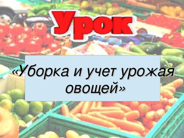 «Уборка и учет урожая овощей»