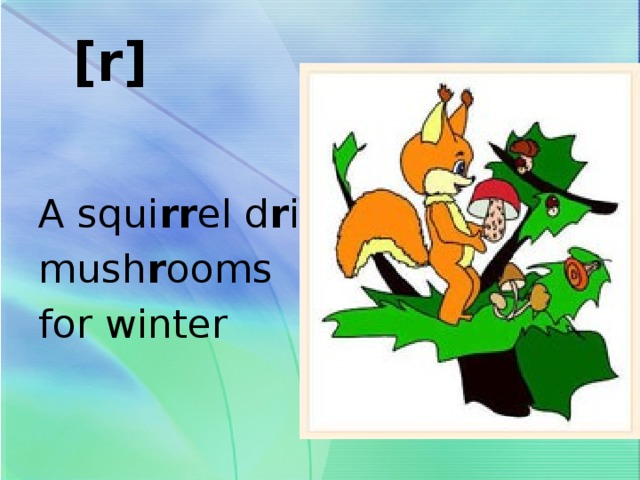 [r]   A squi rr el d r ies mush r ooms for winter