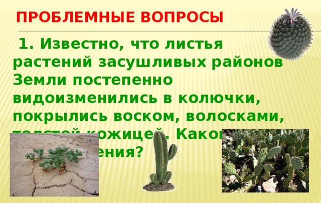 Проблемные вопросы  1. Известно, что листья растений засушливых районов Земли постепенно видоизменились в колючки, покрылись воском, волосками, толстой кожицей. Какова роль этого явления?