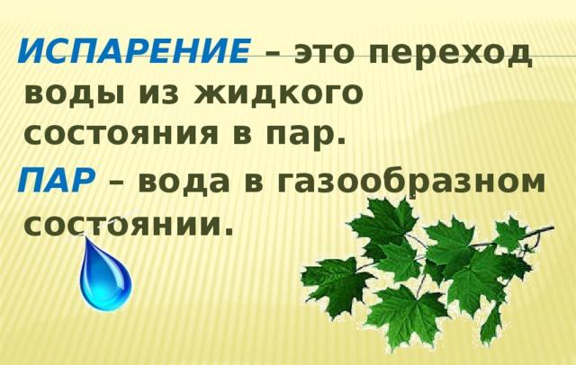 ИСПАРЕНИЕ – это переход воды из жидкого состояния в пар.  ПАР – вода в газообразном состоянии .